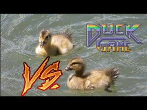 Warning: TOO MUCH SILLY | Duck Game w/ Tonic